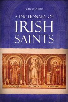 A dictionary of Irish saints